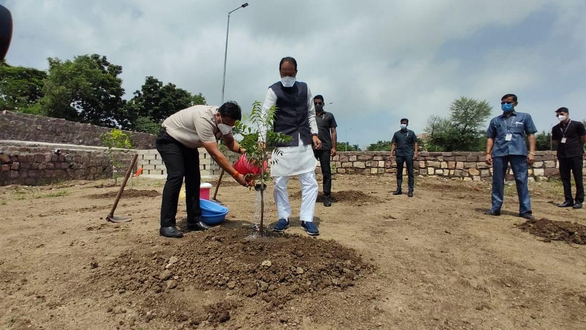 स्मार्ट उद्यान में नीम का पौधा लगाकर सीएम ने कहा- बेहतर कल के लिए करें पौधारोपण