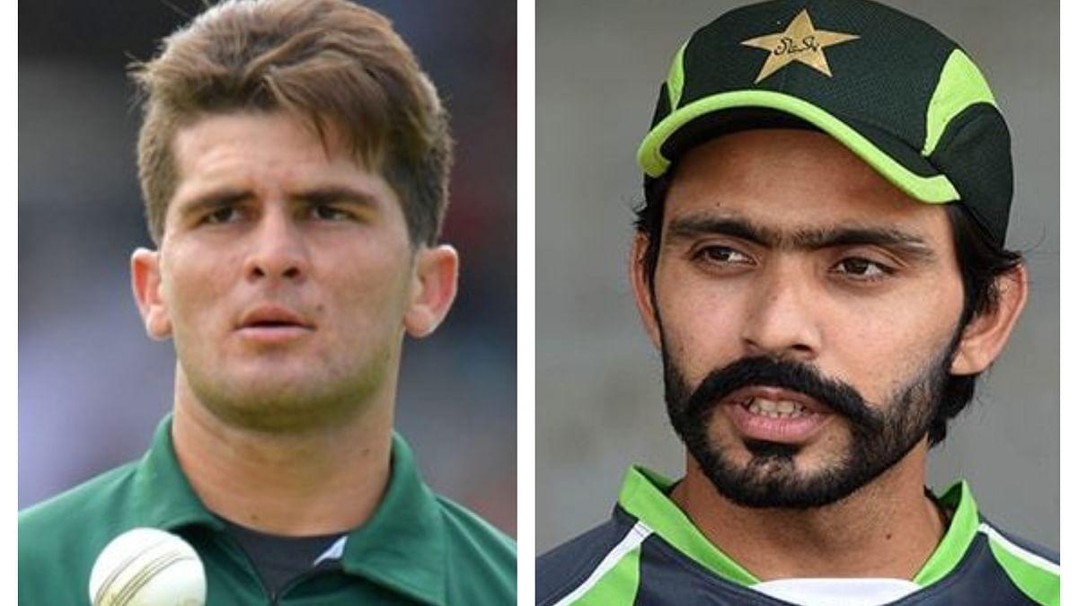 आईसीसी टेस्ट रैंकिंग में करियर के सर्वश्रेष्ठ स्थान पर पाकिस्तान के फवाद और शाहीन