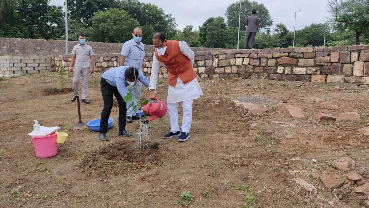 CM ने स्मार्ट पार्क में पीपल का पौधा लगाया, पौधे के महत्व को बताते हुए कही ये बात