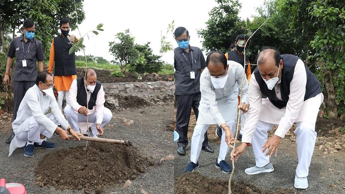 """OnePlantADay: पौधारोपण को बढ़ावा देते हुए आज मुख्यमंत्री ने लगाया """"जामुन का पौधा"""""""