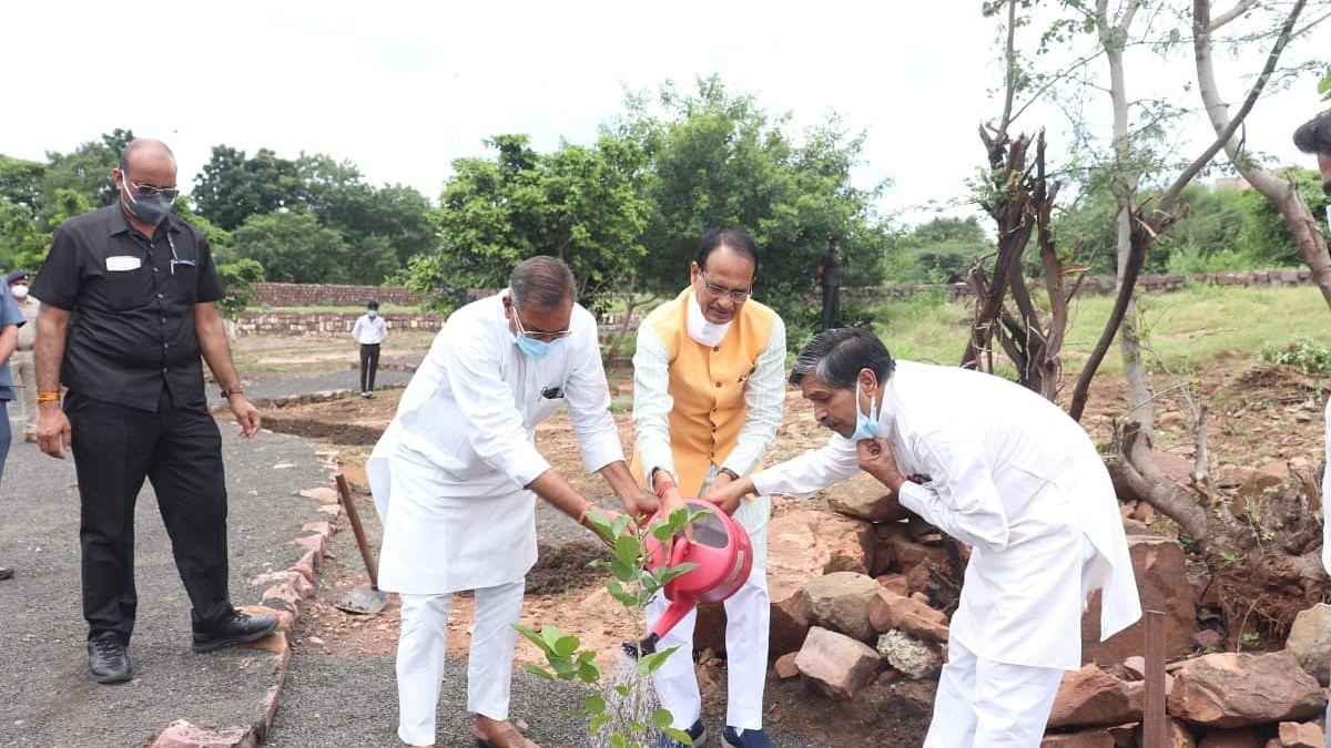 OnePlantADay: आज सीएम ने विधायक सूबेदार सिंह और कुंवर सिंह के साथ लगाया 'करंज का पौधा'