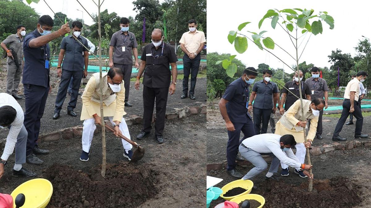 आज एमपी के मुख्यमंत्री ने स्मार्ट पार्क में लगाया कदम्ब का पौधा, ट्वीट कर कही ये बात
