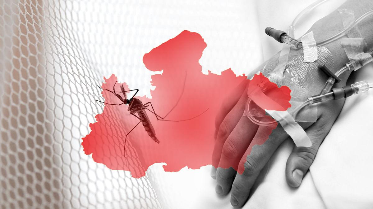 Gwalior : डेंगू मरीजों ने बढ़ाई मलेरिया विभाग की टेंशन, 26 मिले संक्रमित