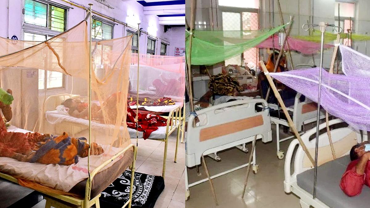MP में लगातार बढ़ रहा है डेंगू का प्रकोप, भोपाल में एक दिन में मिले इतने मरीज