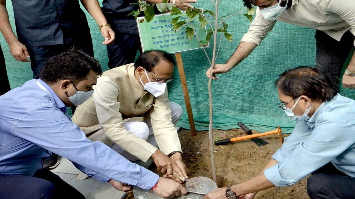 MP के CM शिवराज सिंह ने नये मध्यप्रदेश भवन में मौलश्री का पौधा लगाया