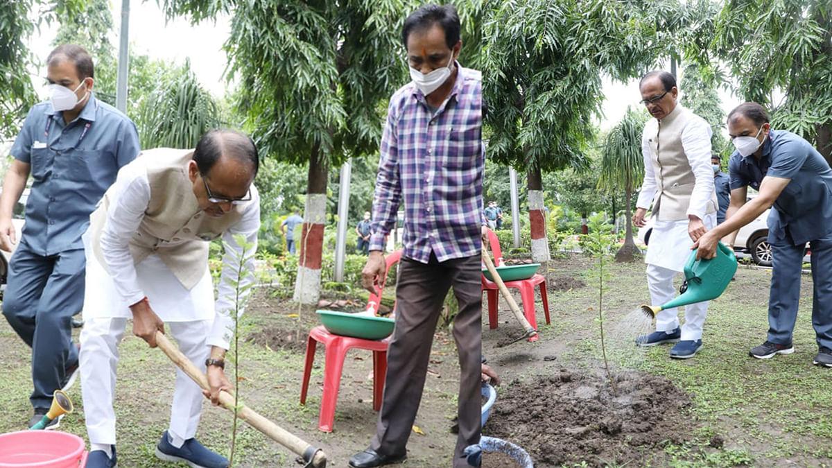 दिल्ली जाने से पहले सीएम ने निवास परिसर में लगाया आंवले का पौधा, ट्वीट कर कही ये बात