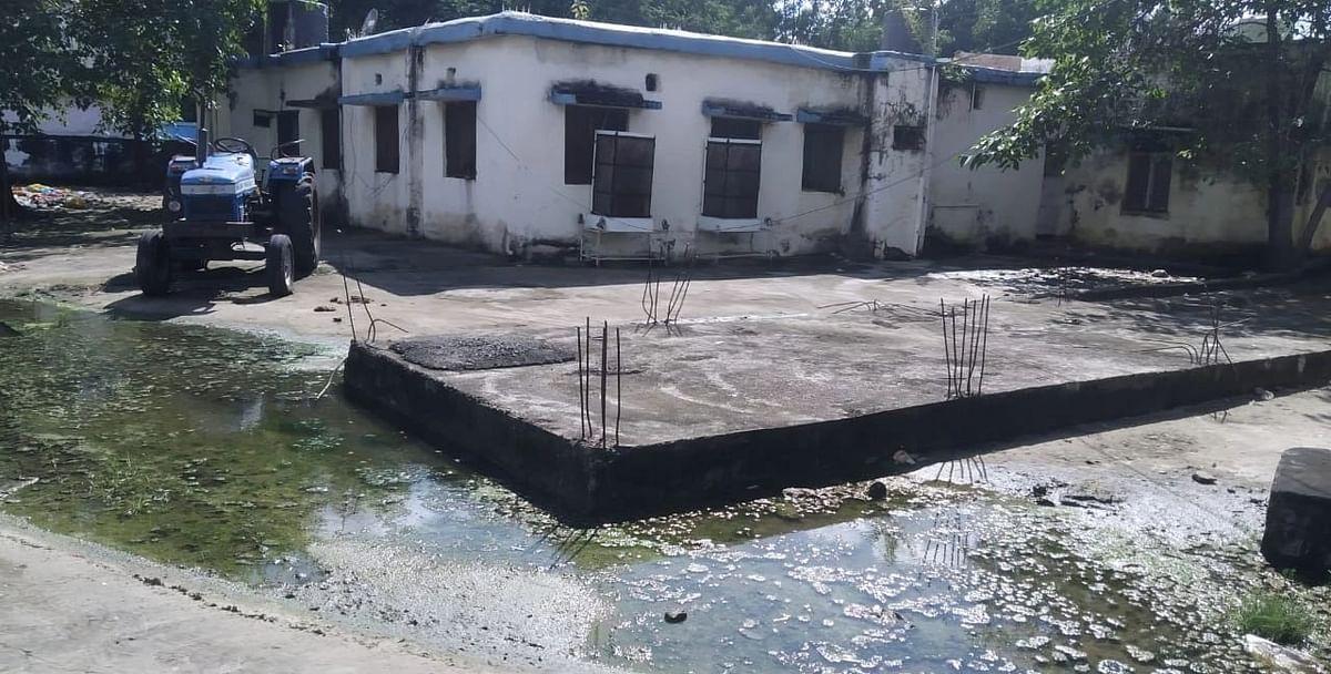 पानी निकासी नहीं होने से पनप रहे मच्छर, गदंगी से रहवासी परेशान