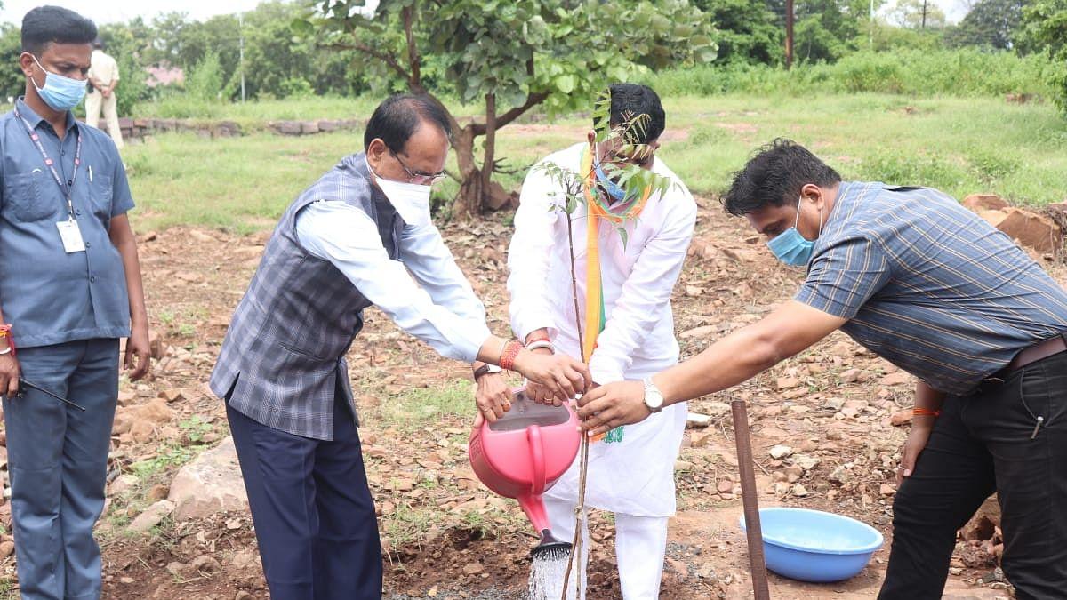 Bhopal: आज मुख्यमंत्री शिवराज ने पूर्व विधायक नागर सिंह के साथ लगाया 'नीम का पौधा'