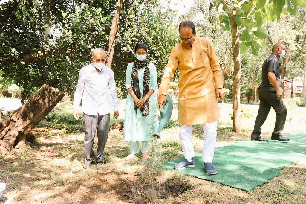 विजयादशमी के पावन अवसर पर मुख्यमंत्री शिवराज ने निवास परिसर में लगाया 'आंवले का पौधा'