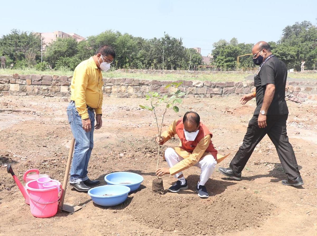 Bhopal: महानवमी के पावन अवसर पर सीएम ने स्मार्ट पार्क में लगाया 'करंज का पौधा'