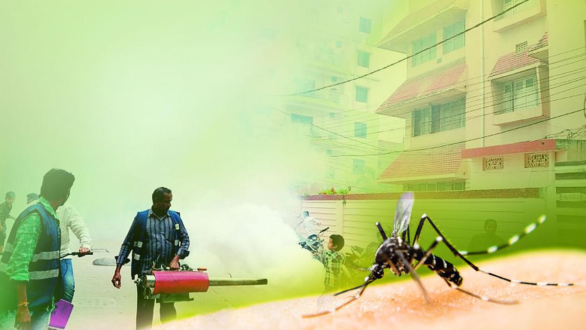राजस्थान में डेंगू का कहर- सरकार ने लिया 'डेंगू मुक्त राजस्थान' अभियान चलाने का फैसला
