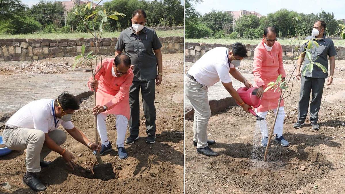 उत्तम स्वास्थ्य, सुखद जीवन के लिए धरती पर हरियाली परम आवश्यक: CM शिवराज