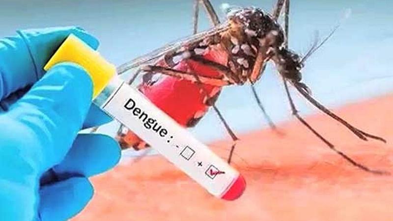 पंजाब में डेंगू के बढ़ते मामलों से चन्नी सरकार बेखबर : आप