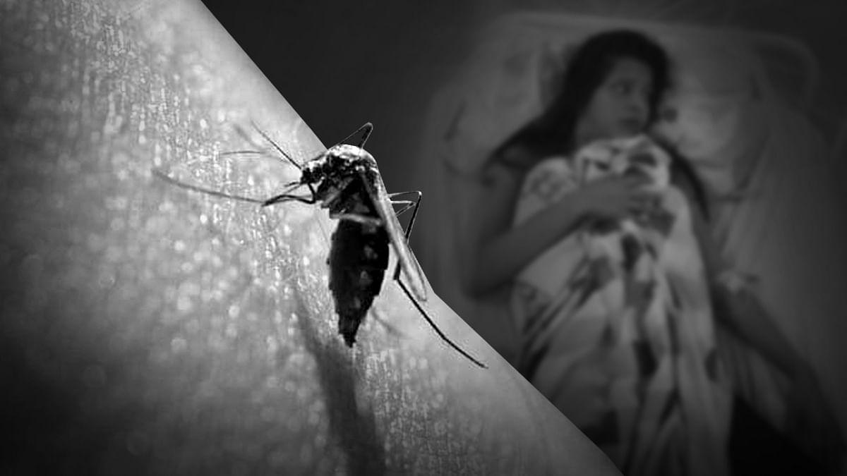 ग्वालियर में तेजी से पैर पसार रहा डेंगू, 24 घंटे में मिले इतने मरीज