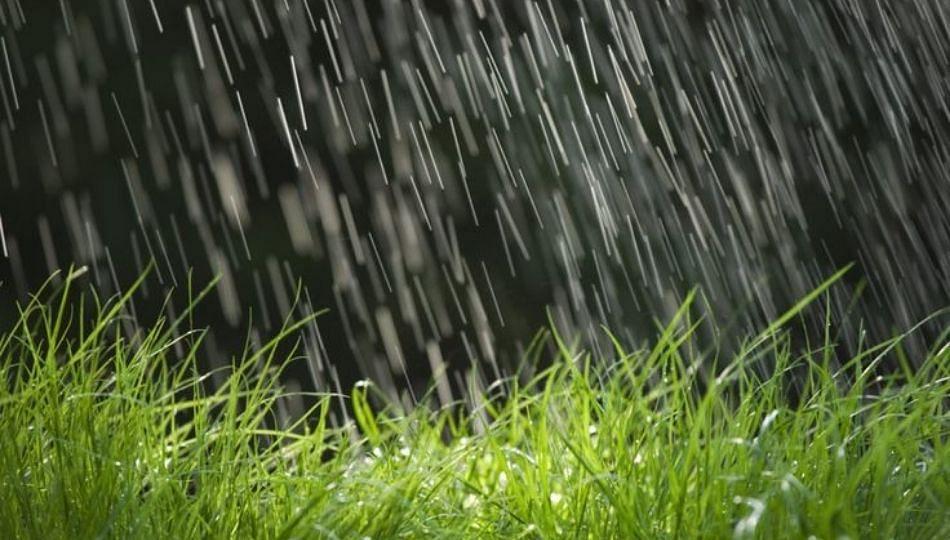 नंदुरबार जिल्ह्यात आतापर्यंत फक्त 33 टक्केच पाऊस !