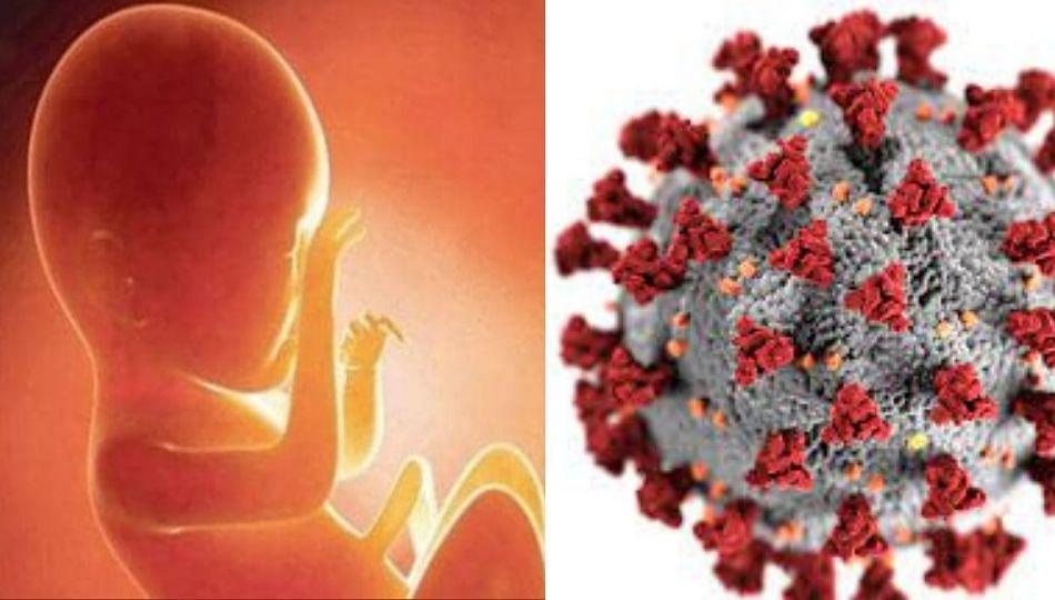 कोरोनामुळे वाढले नैसर्गिक गर्भपात