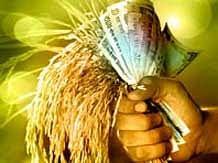 शेतकऱ्यांसाठी गुड न्यूज : प्रधानमंत्री पिक विमा योजनेची मुदत वाढली