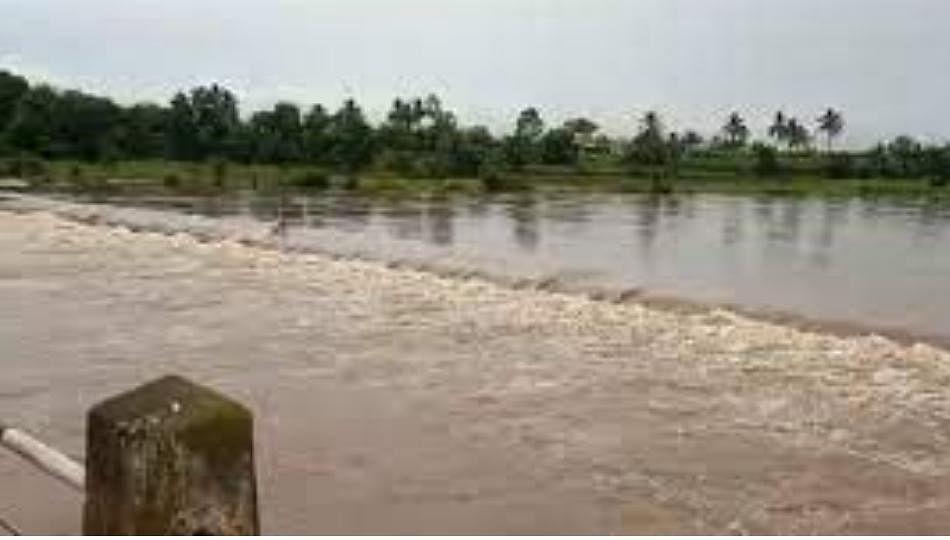 वारणा, कृष्णा नदीचे पाणी शेतात घुसले; चांदोलीत अतिवृष्टी