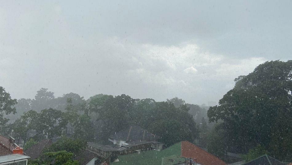 महाराष्ट्रात मुसळधार पाऊस सुरूच
