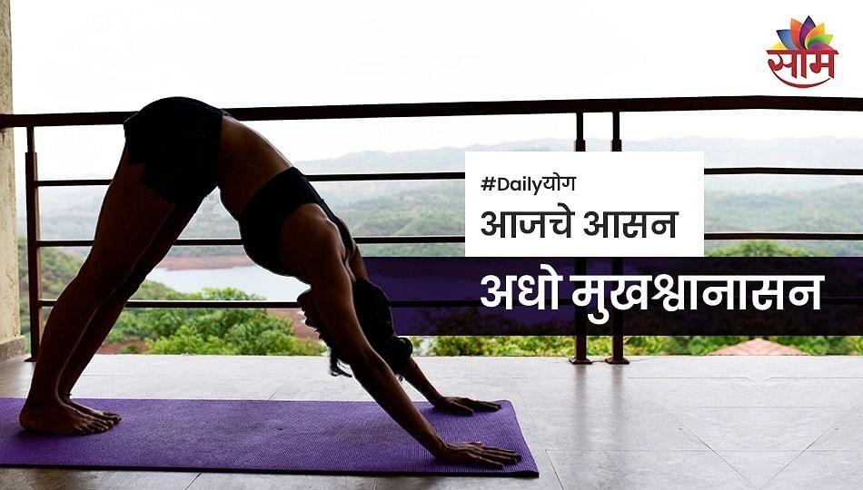 Daily Yoga : अधो मुखश्वानासन करण्याचे फायदे...