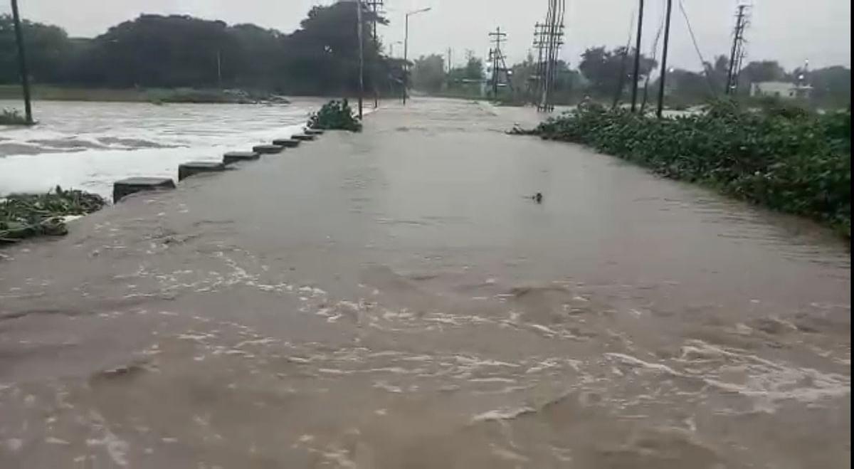 नगरमध्ये सीना नदीला पूर, शेवगावात ढगफुटी