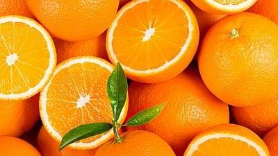 अनुदान कसले देताय, संत्र्यावर संशोधन करा! एनआरसीला साकडे