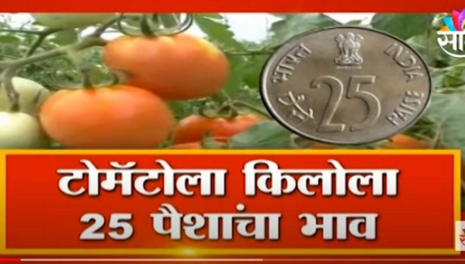 Farmers News | बाजारात शेतकऱ्यांच्या घामाची ही किंमत ? पाहा सविस्तर बातमी