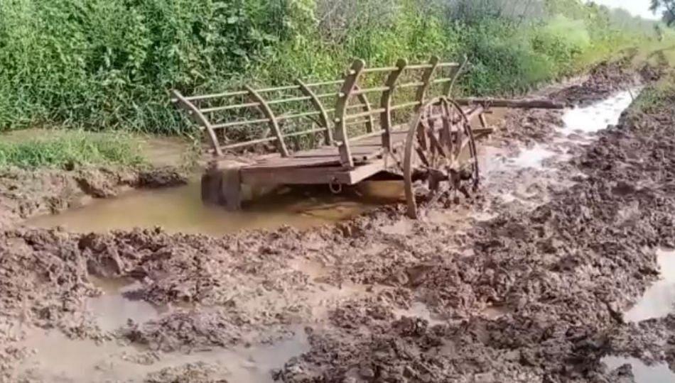 पाणंद रस्ता चिखलमय झाल्याने खते घेऊन जाणारी बैलगाडी चिखलात फसली
