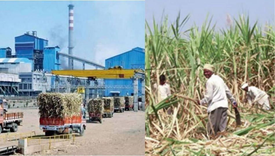 संपूर्ण FRP न देणाऱ्या साखर कारखान्यांना गाळप परवाना नाही!