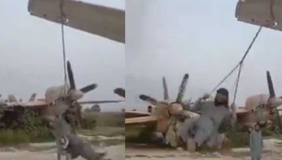 Video Viral; तालिबानी घेतायेत झोपाळ्याची मज्जा