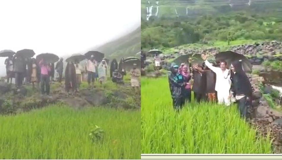 योग्य भाव मिळत नसल्याने आंबेगाव तालुक्यातील शेतकऱ्यांनी कोबीच्या पिकांवर फिरवला रोटर