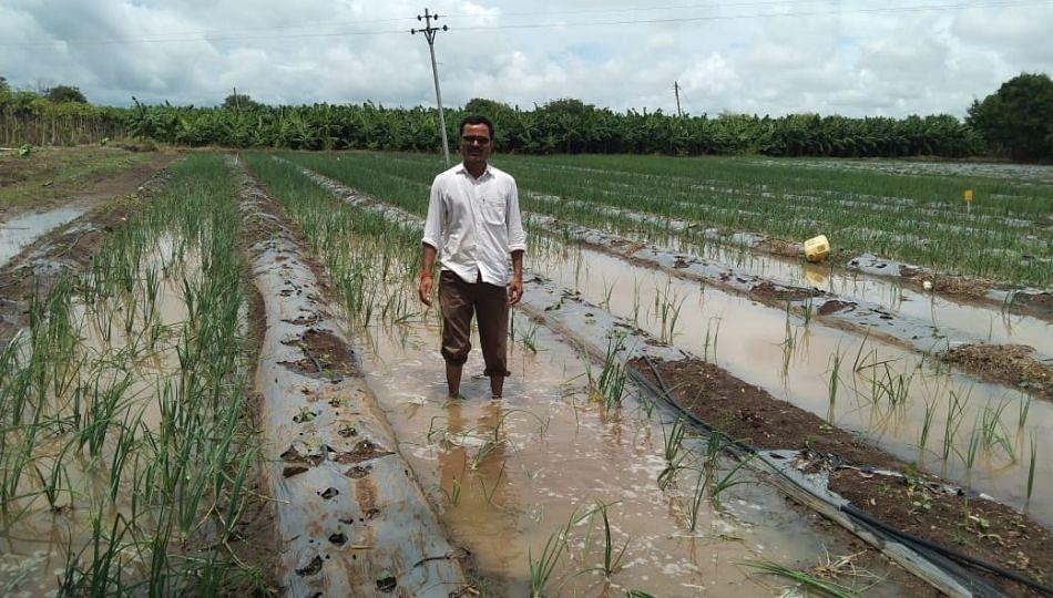 Parbhani; हेक्टरी पन्नास हजाराची मदत द्या, शेतकऱ्यांची मागणी