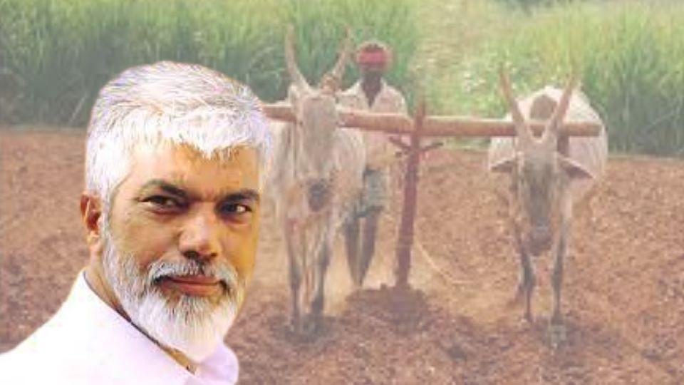 Good News : नुकसानग्रस्त शेतकऱ्यांना दिवाळी आधी मिळणार मदत!