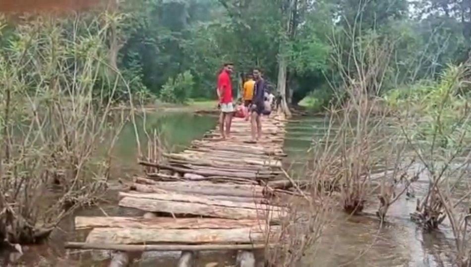Gadchiroli: ग्रामस्थांनी श्रमदानातून बांधला बांबूचा पूल; कठीण परिस्थितीत काढावी लागायची वाट