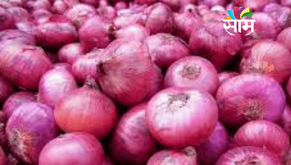 कांदा ठेवलाय का विकला? बघा कसला भारी भाव मिळतोय!