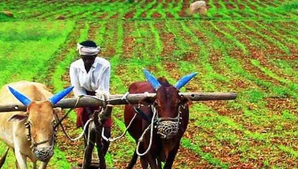 राज्यातील शेतकऱ्यांना मिळणारबिनव्याजी कर्ज