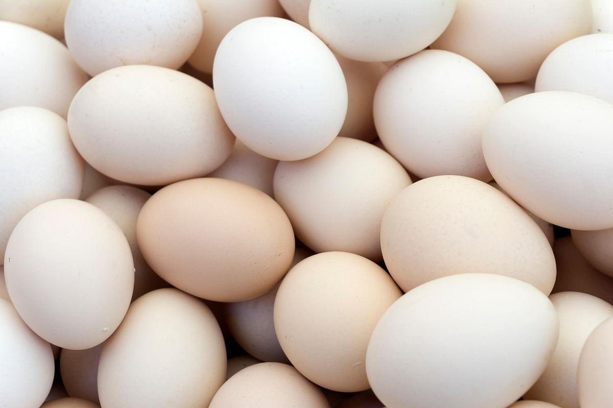 अंडी 100 रुपये डजन होणार? अंड्यांचा काळाबाजार तर सुरु झाला नाही?वाचा काय घडलंय...