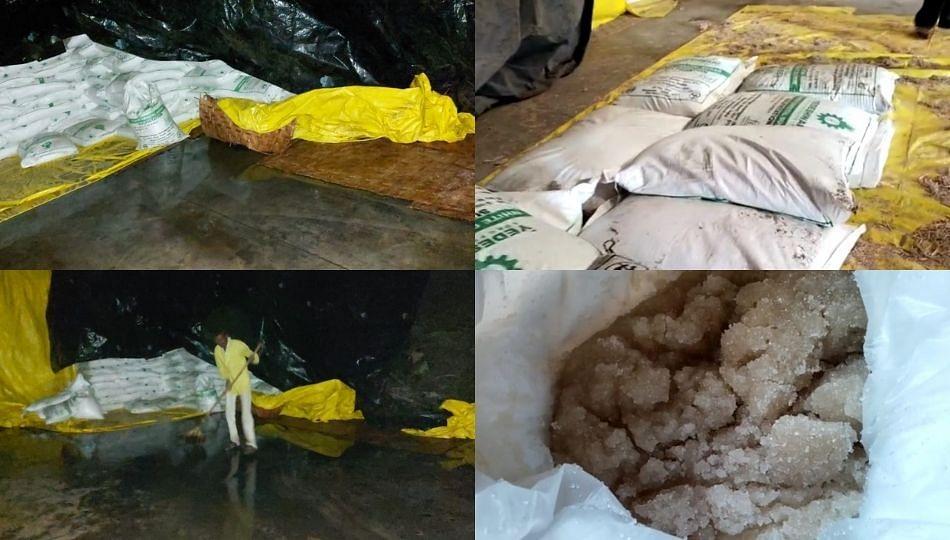 मुसळधार पावसाने येडेश्वरी कारखान्यातील 30 हजार पोते साखर भिजली !