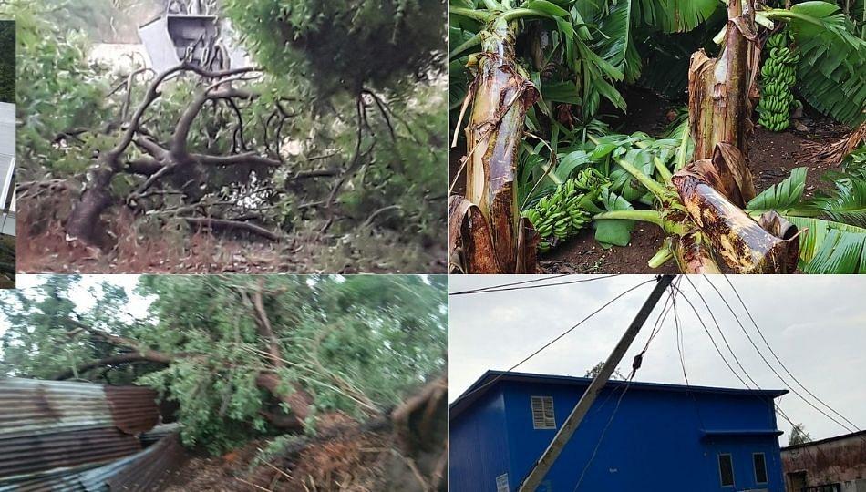 जालन्यात चक्रीवादळासह गारांचा पाऊस; शेतीचे मोठे नुकसान