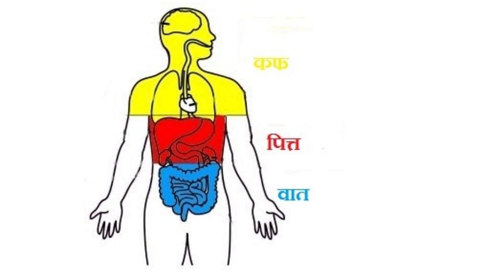 वात, कफ, पित्त दोषामुळे त्वचेवर होतात गंभीर परिणाम; एकदा वाचाच