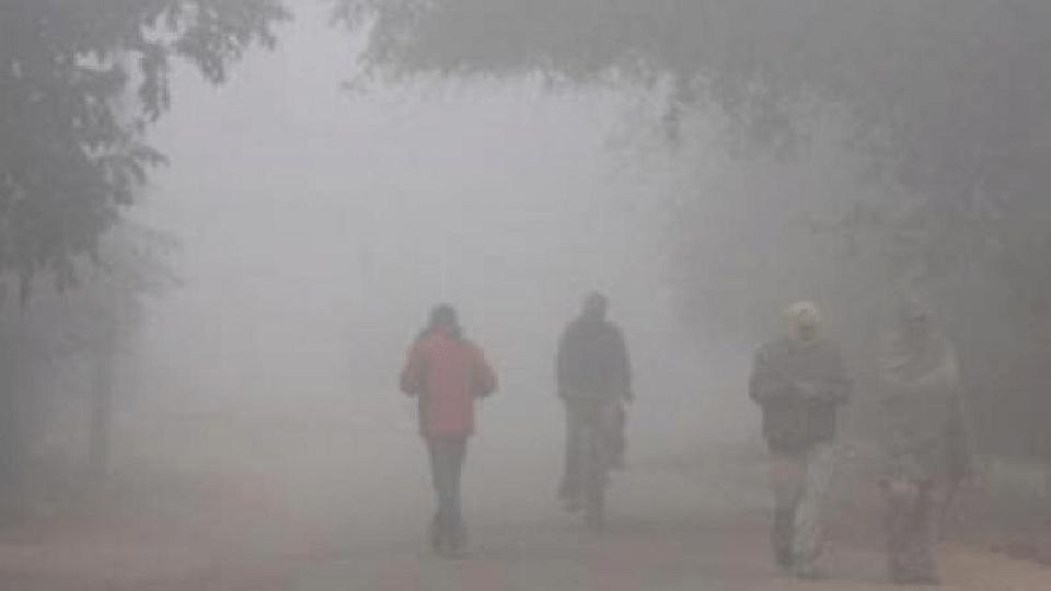 दिल्लीत विक्रमी थंडी