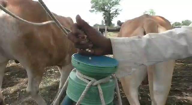 बियाने नसलेल्या शेतकऱ्यांचे नावे यादीत, कृषि विभागाचा गोंधळ
