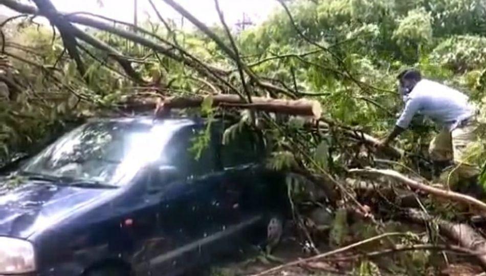 अमरावती शहरात वादळी पाऊस, झाडांची मोठ्या प्रमाणावर पडझड वाहनांचे नुकसान