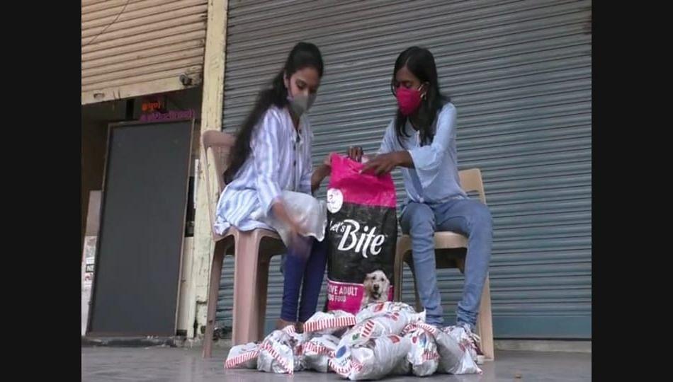 लातुरात दोन तरुणी करत आहेत मोकाट कुत्र्यांना अन्नदान