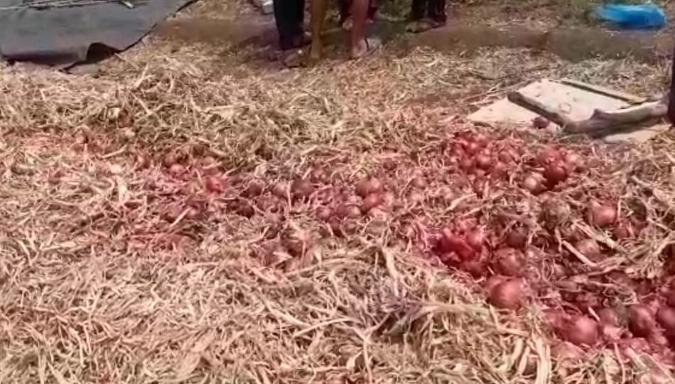 मृत्यू झालेल्या शेतकऱ्याचा कांदा विकृताने सडवला