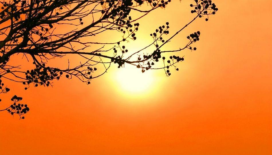 'रोहिणी' नक्षत्रात तापमान वाढण्याची लक्षणे