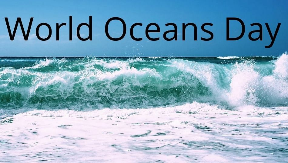जागतिक महासागर दिन : चार सवयी वाचवतील समुद्री जनजीवन