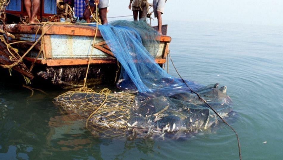1 जून ते 31 जुलैपर्यंत पावसाळी मासेमारी बंदी; मत्स्यव्यवसाय विभागाचे आदेश जारी