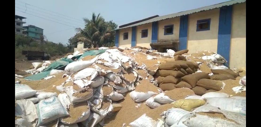 रायगडमध्ये कोरोना काळात उतमात ; गोदामाबाहेरील हजारो टन धान्याची नासाडी