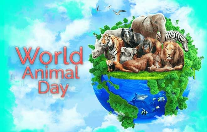 WORLD ANIMAL WELFARE DAY: A DAY DEDICATED TO THE WELFARE OF ANIMALS